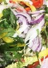 野菜もりもり 白菜の千切りサラダ