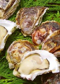 殻付き牡蠣の剥き方