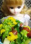 リカちゃん♡菜の花レタス胡瓜トマトサラダ