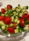 トマトときゅうりのごまポンサラダ 簡単