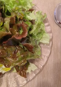 簡単!美味しい!リーフレタスのサラダ