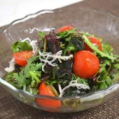 旬野菜*春菊入り海藻サラダ