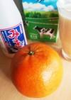 タンカン×みき×牛乳で飲みやすい健康飲料