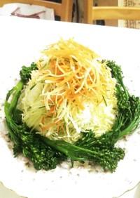 スティックセニョールと千切り野菜のサラダ