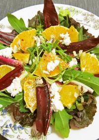 タルディーボとイタリア野菜のサラダ