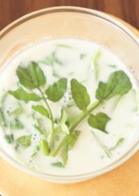 春の肝対策に!クレソンの豆乳スープ