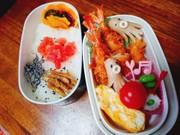 春休みのお弁当の写真