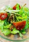 ベビーホタテと長芋のサラダ