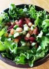 豆 胡瓜 トマト グリーンレタスサラダ