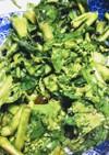 菜の花のRawサラダ