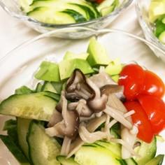 手抜き料理の味方*常備菜*塩きのこ