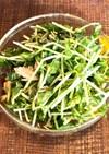 【作り置き】節約☆豆苗の塩昆布ツナサラダ