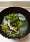 春キャベツの外葉と新玉ねぎのお味噌汁