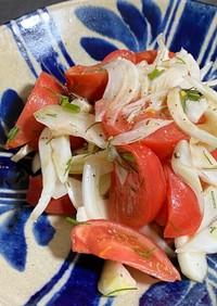 簡単★フェンネルとトマトのシンプルサラダ
