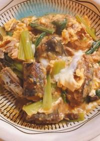 さば味噌缶と小松菜のさっと煮込み