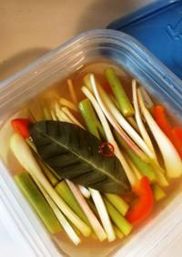 ほったらかしでピリ旨!島野菜のピクルス