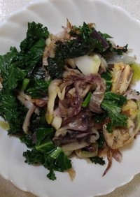 イタリア野菜2種とサバの炒め物