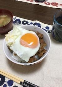 ケンミンショー焼豚玉子飯自宅アレンジ