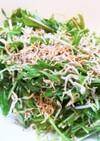 水菜とカリカリじゃこの和風サラダ