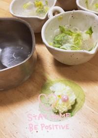キャベツ多め味薄め体に良い簡単春雨スープ