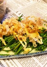 新潟雪国山菜 木の芽(あけび)のお浸し