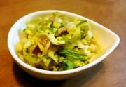 かんたん野菜料理 キャベツのおかかあえの写真