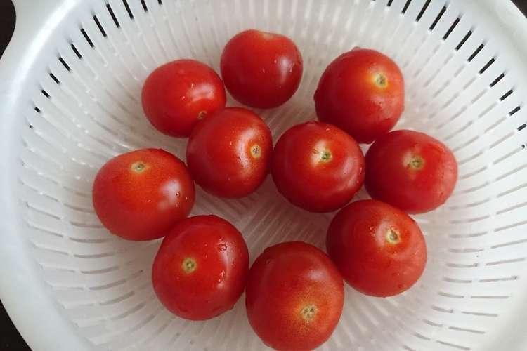 保存 プチトマト 【トマトの冷凍】の正解はコレ! 解凍なしで使える保存テクニック