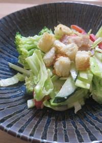 シーザー風サラダ /七尾市給食