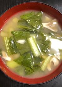 舞茸と小松菜の味噌汁