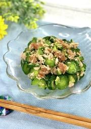 《ご飯のお供・夏》きゅうりとツナの梅和えの写真