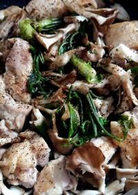 鶏肉とコシアブラ炒め