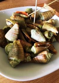 つめばい貝の塩茹で