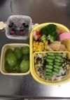 4歳児 お弁当 幼稚園 簡単