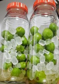 りんご酢入りの梅シロップ・梅ジュース