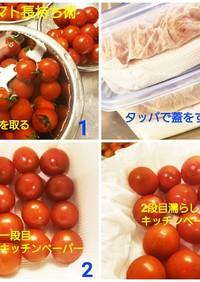 プチトマト長持ち