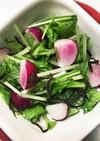 簡単!ラディッシュと水菜の塩昆布サラダ