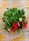 タコときゅうりの酢の物風サラダ