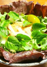 鯖水煮缶、新玉葱、オレガノの葉のサラダ