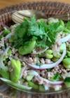 そら豆と豚ひき肉のアジアンマリネ
