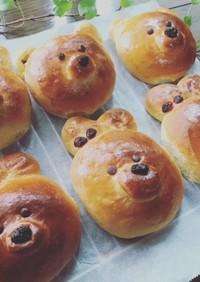 おうちで初めてのパン作り