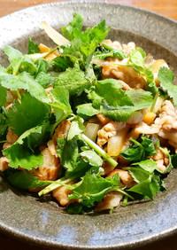 タモリさんの豚の生姜焼き+三つ葉大量消費
