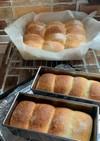 ふわふわ♡クリームチーズちぎりパン