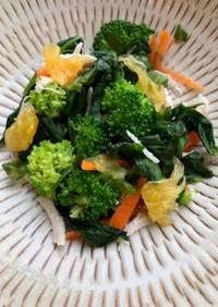 鶏野菜サラダ 紫蘇(バジル)ドレッシング