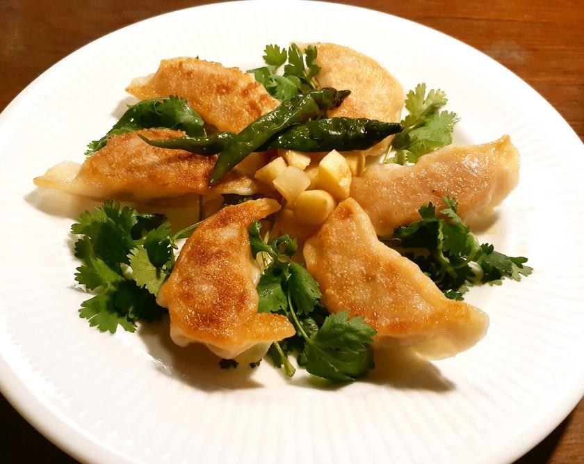 白菜漬け(乳酸発酵の白菜)の焼餃子