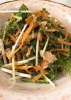 にんじんと水菜のしそサラダ