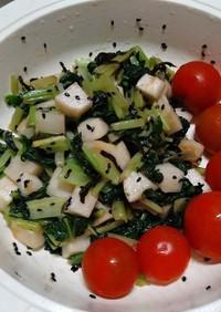 かぶとターサイ塩昆布ナムル(簡単)小松菜