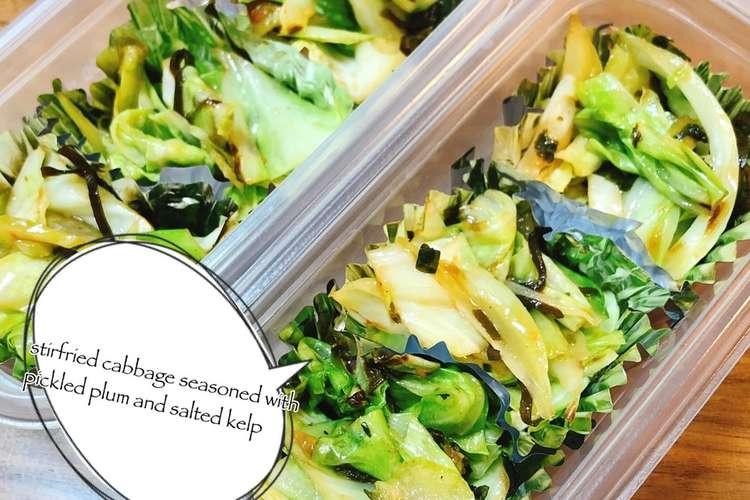 作り 置き キャベツ お弁当 キャベツの簡単レシピランキング