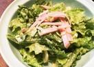 レタスとハムのマヨサラダ