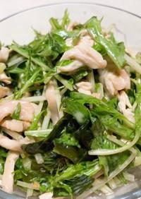 水菜と鶏むね肉の腸活サラダ☆