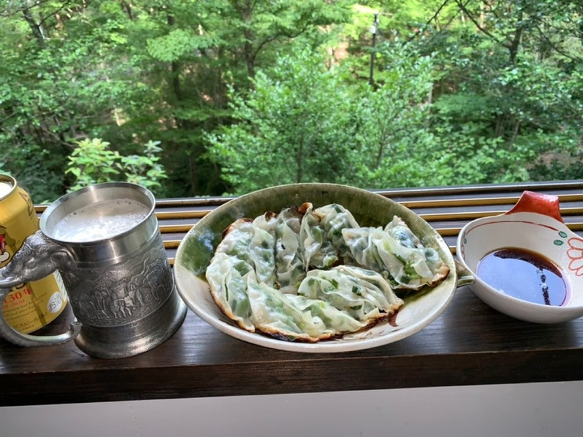 夏野菜の餃子【ダイエット】